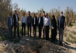 کاشت 600 اصله نهال در شهر لار به بهانه روز درختکاری و هفته منابع طبیعی